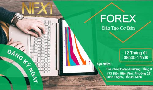 Dao Tao Forex Co Ban